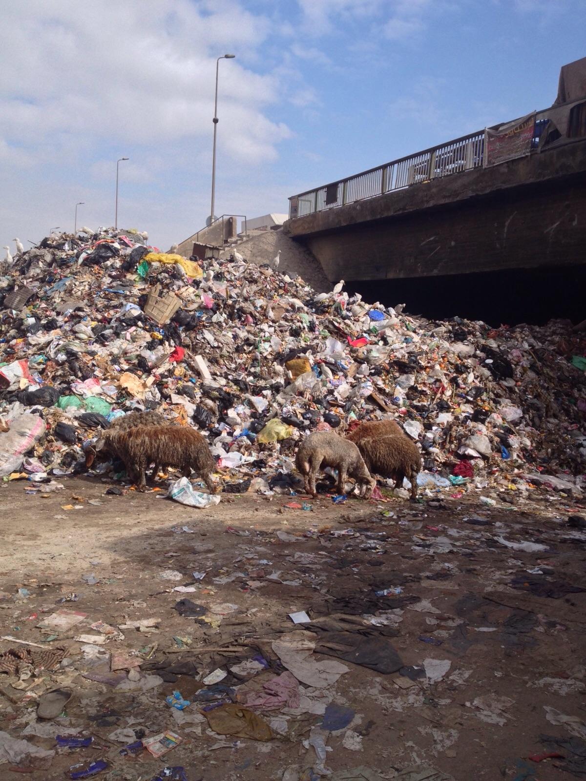 تراكم أكوام القمامة أسفل كوبري «الدائري» بالوراق