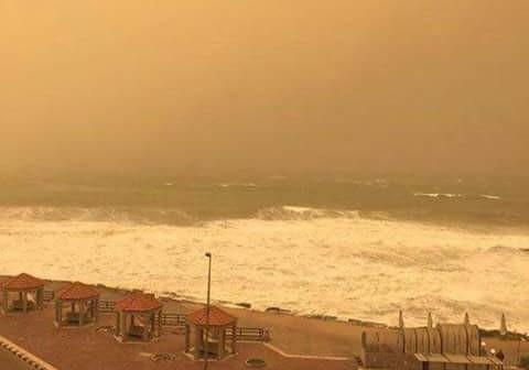 📷| عاصفة ترابية تضرب حي العامرية بالإسكندرية