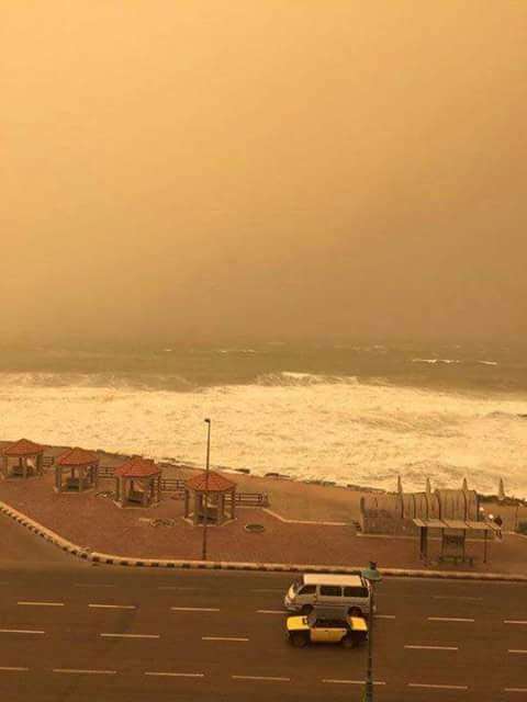 عاصفة ترابية تضرب حي العامرية في الإسكندرية