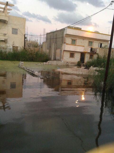 غرق «أبو تلات» بالإسكندرية.. ومواطنون: للمسؤولين قالوا أنتم مناطق عشوائية