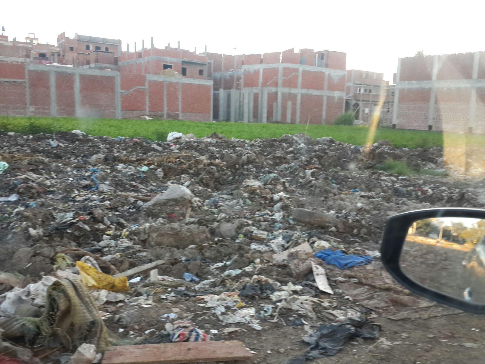 بالصور.. في شبراخيت.. حياة «مستحيلة» وسط القمامة والصرف وحظائر الماشية