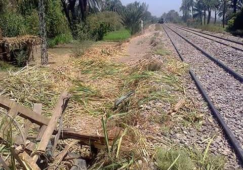 اصطدام قطار بعربة قصب في قنا يجدد مطالب إنشاء مزلقان بجراجوس