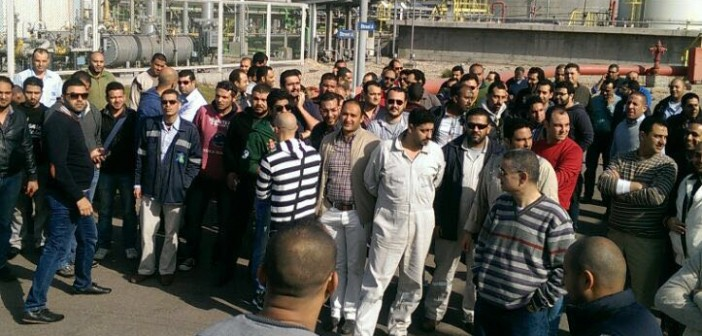 📷 اعتصام عمال «المصرية لإنتاج الاسترينكس» بميناء الدخيلة بسبب الأرباح