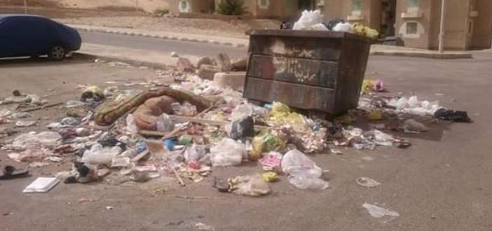 60 يومًا من المعاناة| تفاقم أزمة القمامة في مدينة الشروق (صور)