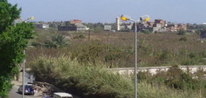 الإسكندرية.. العمارات الجديدة تبتلع الأراضي الزراعية بالمعمورة (صور)