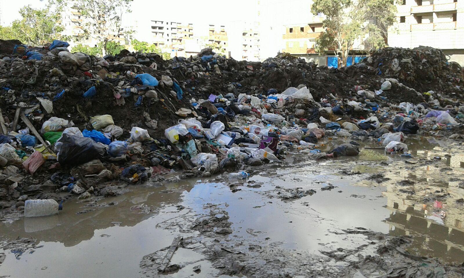انتشار القمامة والصرف الصحي بشوارع منطقة المراغي بالإسكندرية