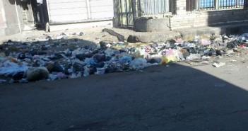 القمامة تغزو شوارع الجمالية بالدقهلية.. وتقاعس المحليات