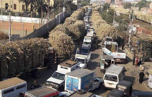 📷| سكر كوم امبو يُسبب زحام «موسمي» عَ أسوان ـ القاهرة الزراعي