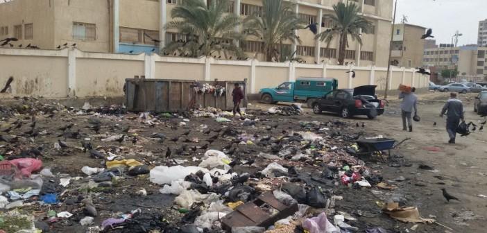 بالصور.. تجمعات للقمامة أمام مدرسة بالسويس.. ومواطن يسأل: أين الحي؟