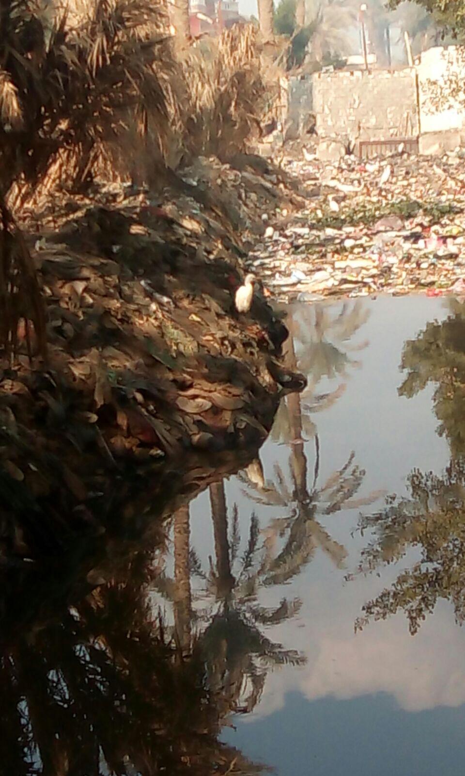 غرق بيوت وأراضي زراعية بإحدى قرى العياط وسط تجاهل المسؤولين
