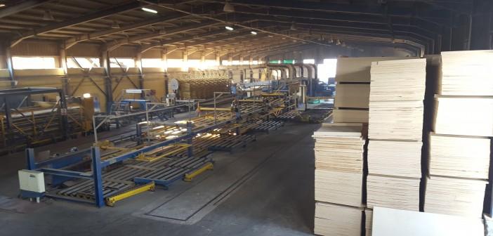 إغلاق مفاجىء لمصنع الأخشاب المصنعة بالغربية.. والعمال: «بقينا في الشارع»
