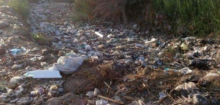 📷| تراكم القمامة على مدخل «كفر طه» بالمنوفية