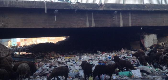 بالصور.. القمامة تسد طريق المرور أسفل دائري الوراق.. وطفح المجاري