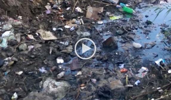 ▶| تلوث ترعة لري الأراضي الزراعية بقرية «الروس» بكفر الشيخ