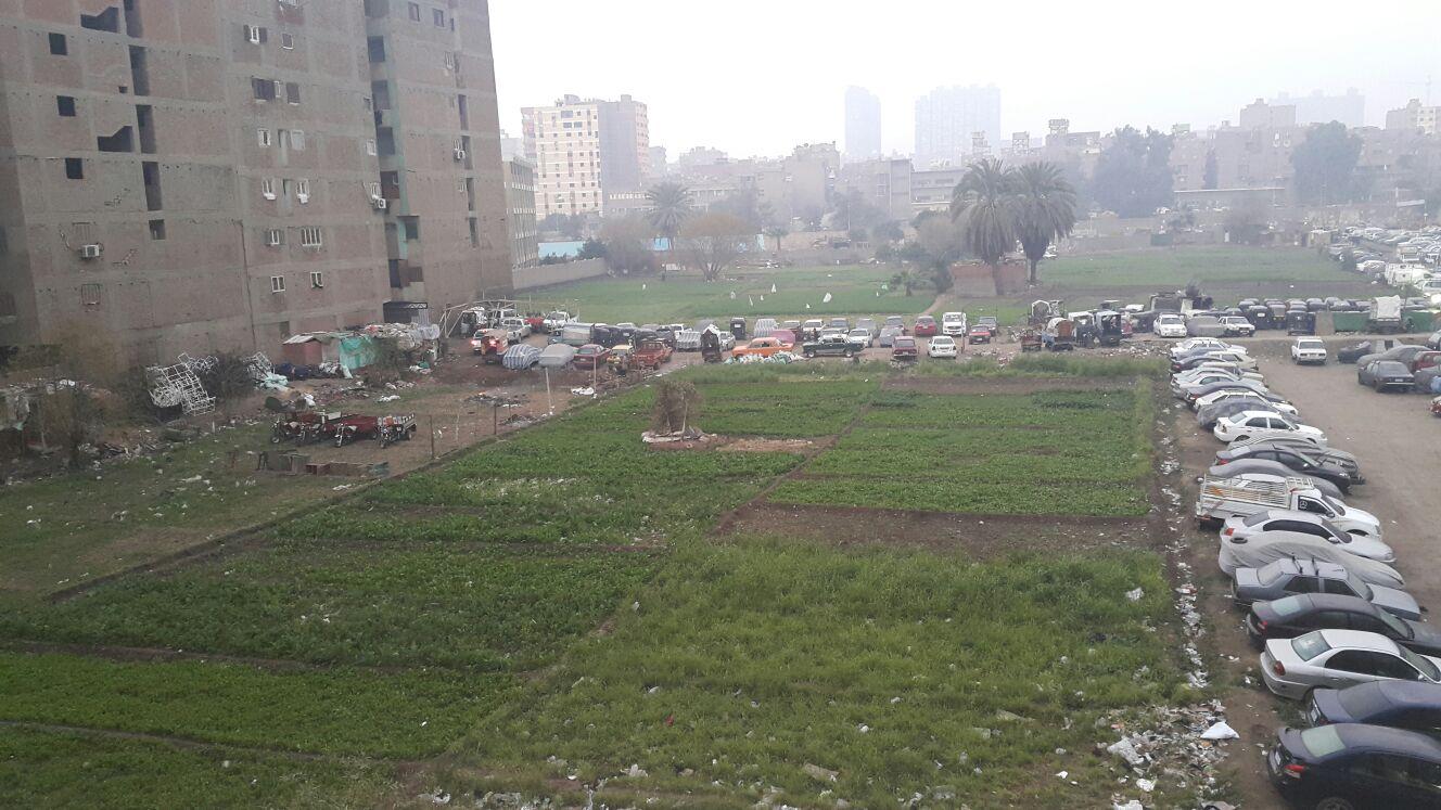 تجريف أراض زراعية بحدائق المعادي.. وتحويلها إلى جراج