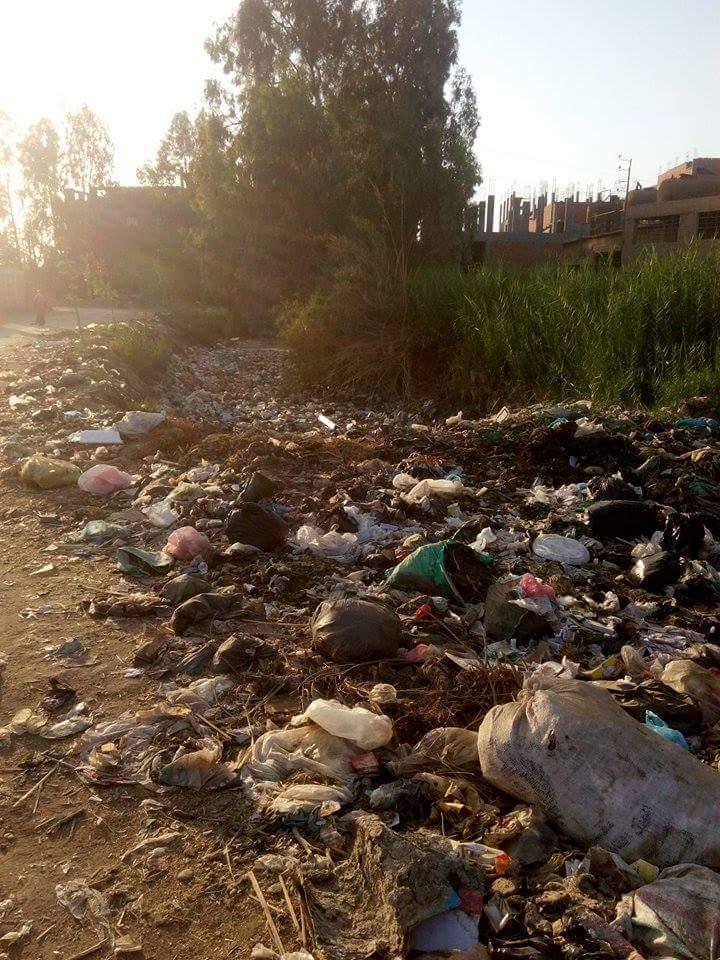 تراكم القمامة على مدخل «كفر طه» بالمنوفية