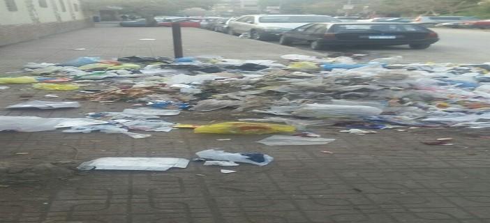 📷| تجمعات يومية للقمامة بجوار كلية البنات بمدينة نصر