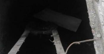 غضب في «سللنت» بالمنصورة بعد ابتلاع بيارة مكشوفة لطفلة (صور)