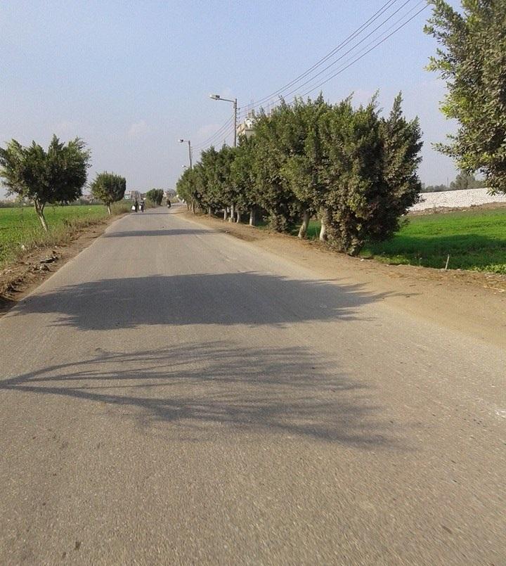 غضب بـ«المقاطعة» بعد تحويل مسار طريق يربط بالدقهلية والشرقية.. وأهالي: «إهدار مال عام»