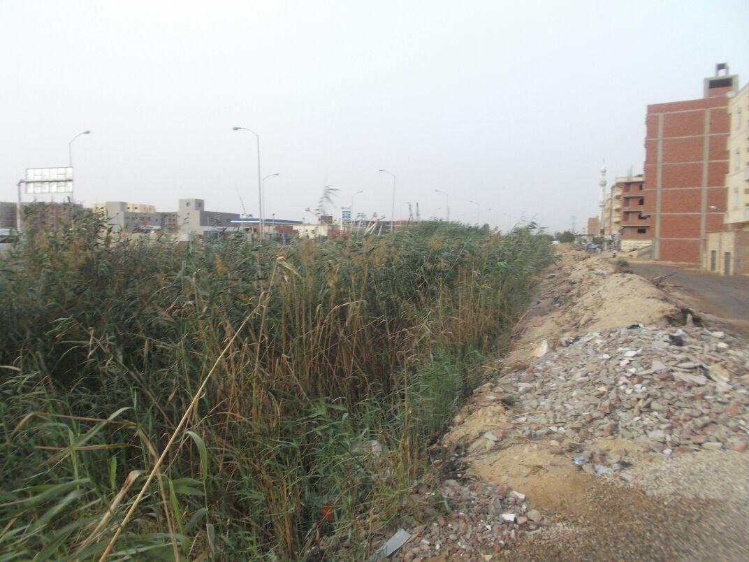صور| في «الكبانون»: محطة الصرف لا تعمل.. والمجاري تصرف بخليج السويس