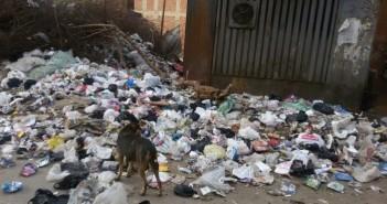 تفاقم أزمة القمامة بأرض اللواء يشُل المرور قرب المحور (شهادة مواطن)