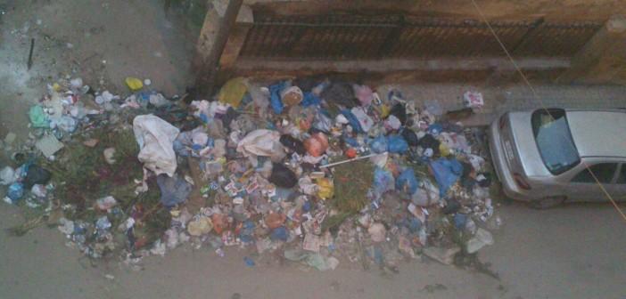 📷| تجاهل رفع القمامة لأيام من مناطق بالإسكندرية