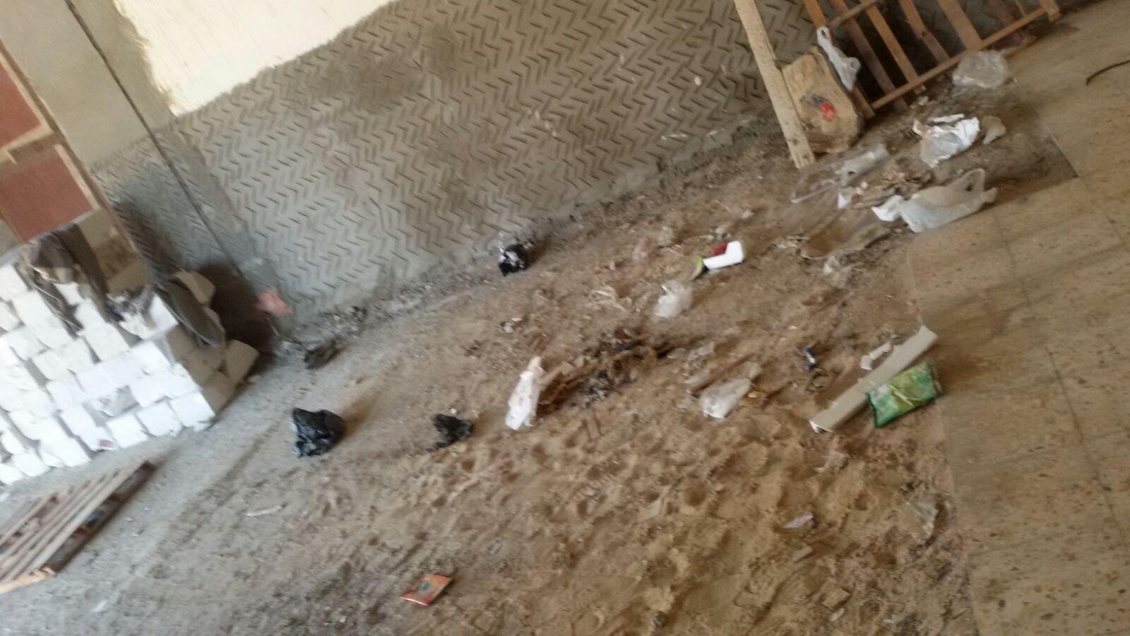 طلاب صيدلة بورسعيد يدسون في كلية عَ المحارة.. وثلث الدفعة «راسب لايحة»