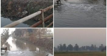 .. 350 فدانا بالغربية دون مياه.. تواصل أزمة ماسورة ريها منذ شهر