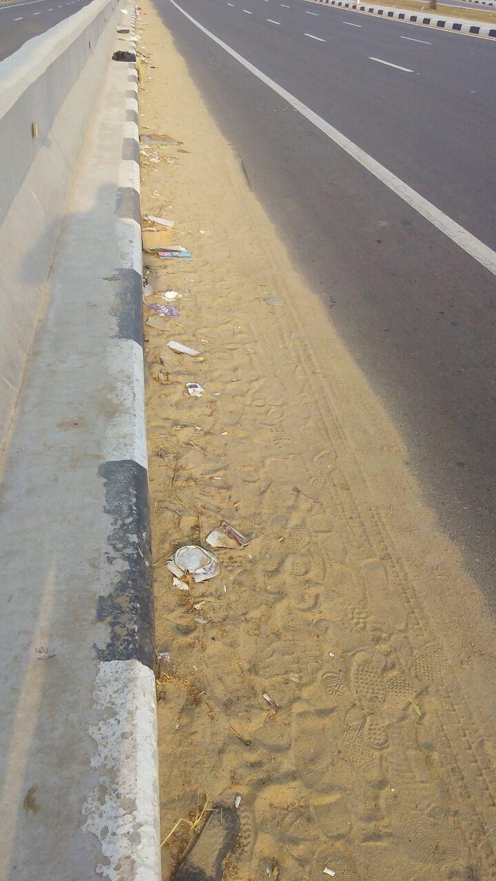مواطن يشكو تردي نظافة كوبري زهراء مدينة نصر وموت أشجار جزيرته