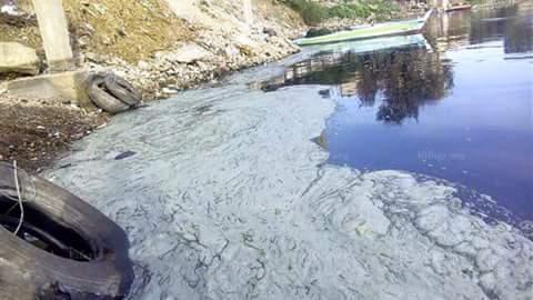 📷| تلوث نهر النيل بالمحمودية بسبب الصرف الصناعي