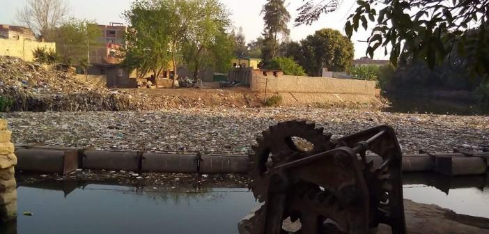 بالصور.. تلوث بحر شبين بالمخلفات والحيوانات النافقة.. ومطالب بتطهيره