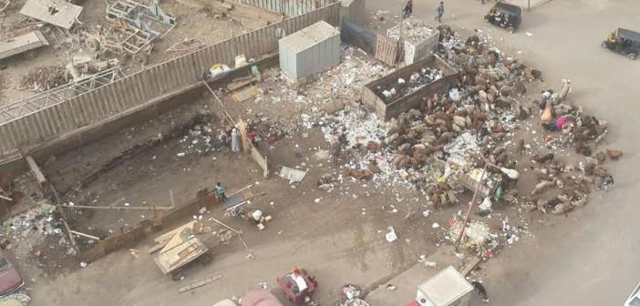 بالصور.. سكان شارع بالمطرية يشكون تقاعس الحي عن رفع القمامة