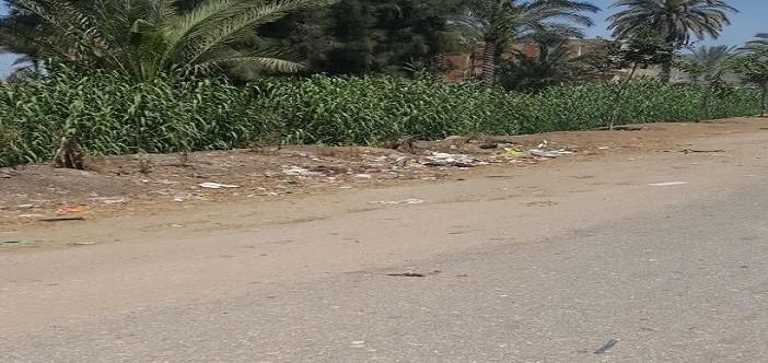 أهالي «المحمدية» بدمياط يطالبون بترميم طرق القرية