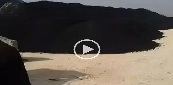 فيديو   أهالي «نجع العرب» بالإسكندرية يشكون تشوين الفحم المستورد بالمنطقة