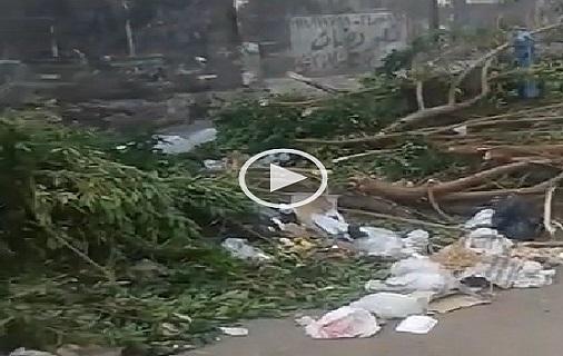 فيديو | القمامة والأشجار تغلق شارع مترو الملك الصالح.. وتجاهل حي مصر القديمة