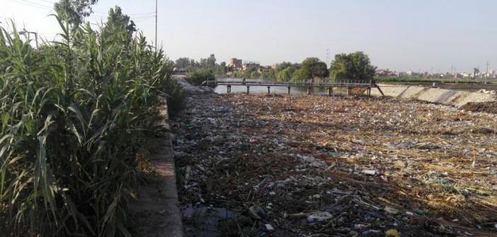 فيديو.. مواطن: غياب المياه عن قرى في بسيون.. وتلوث ترعة الباجورية
