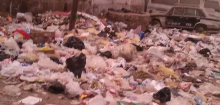 بالصور.. مواطنون يشكون تفاقم أزمة القمامة خلف مستشفى ناصر بشبرا الخيمة