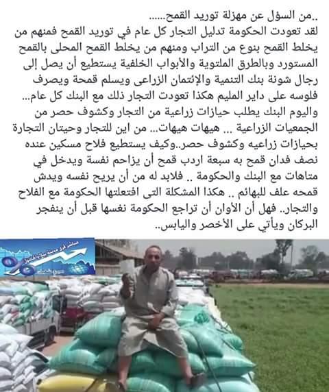 تواصل أزمة توريد القمح بكفر الشيخ.. والفلاحون يستغيثون