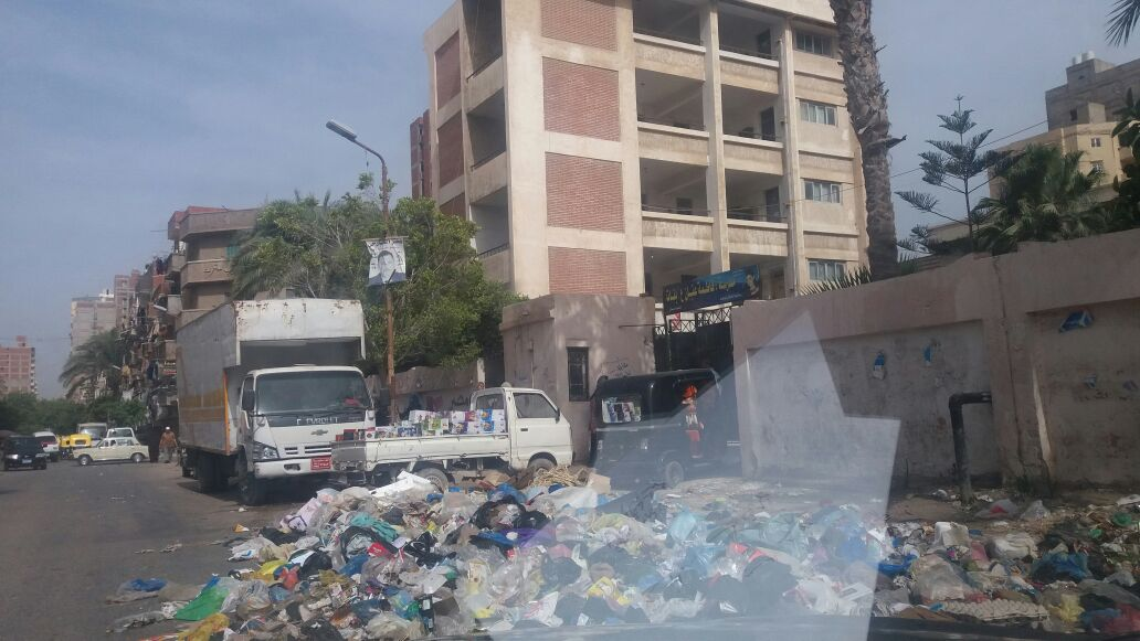 صور.. انتشار تجمعات القمامة بمنطقة السيوف في الإسكندرية