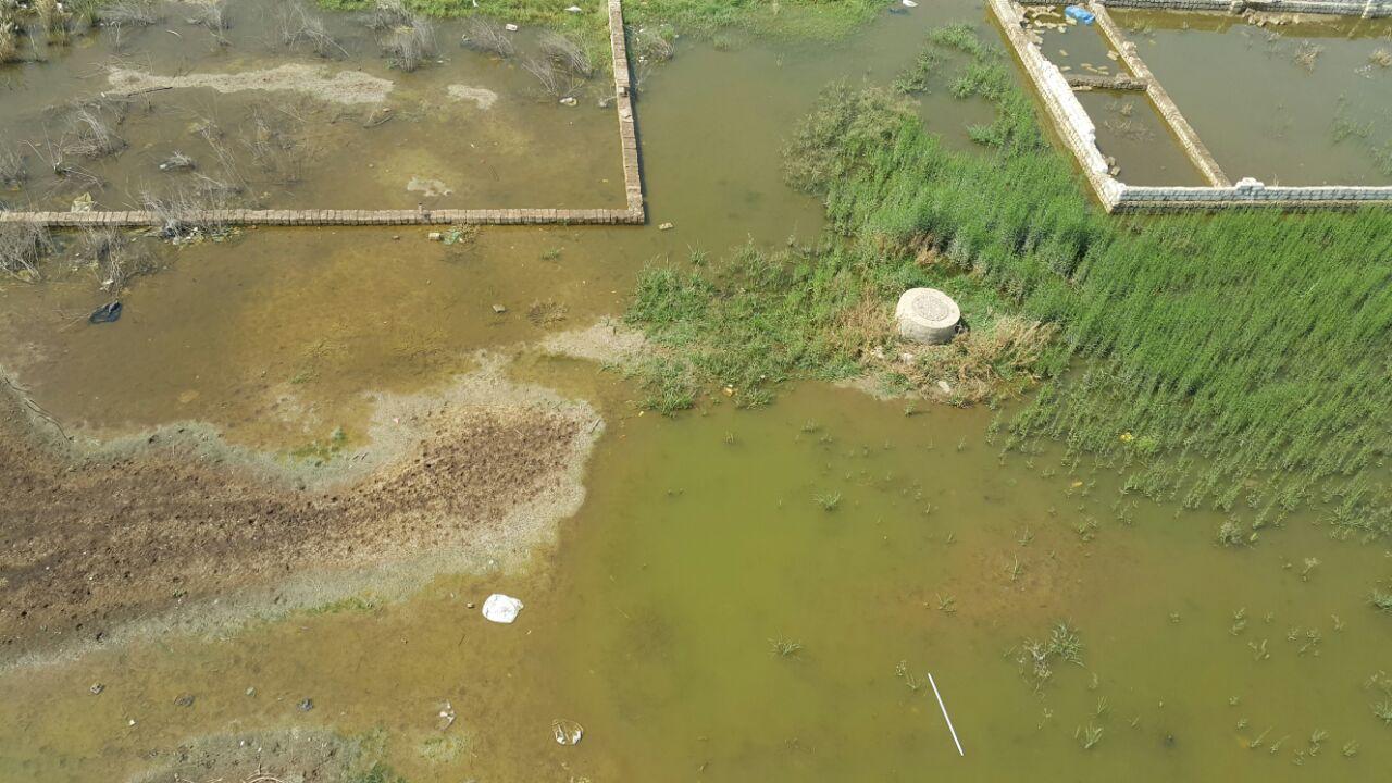 «مواطن» :مياه الصرف الصحى بكفر شكر أغرقت الأراضى والبيوت ولا أحد يستمع لشكوتنا
