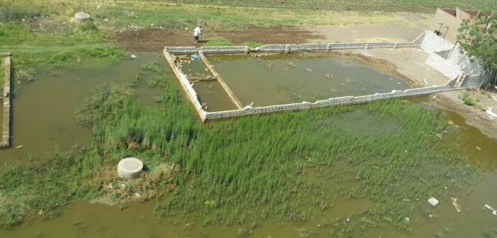«مواطن» :مياه الصرف الصحى بكفر شكر أغرقت الأراضى والبيوت