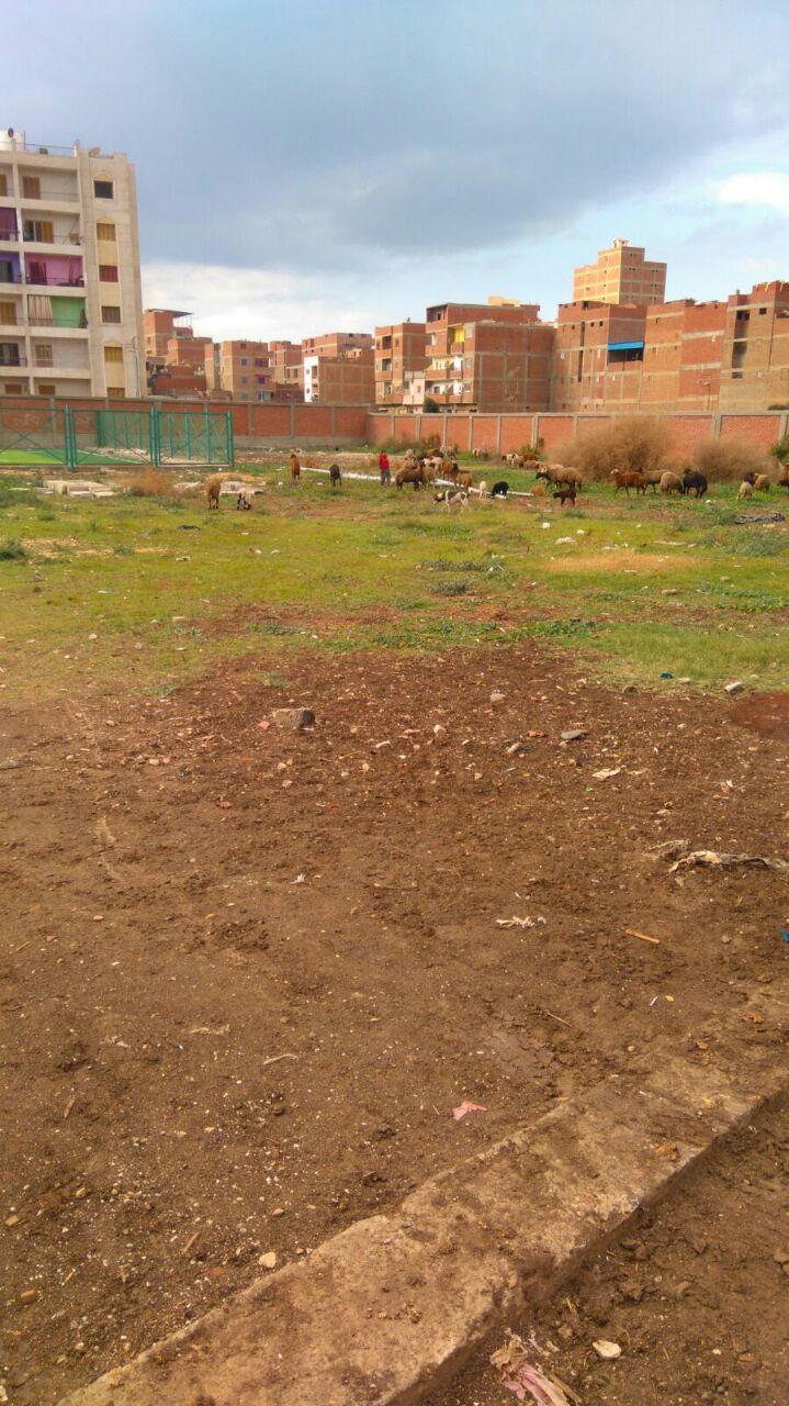إهمال ملعب حي العجيزي بطنطا دون الالتزام بتنفيذ كامل أعماله (صور)
