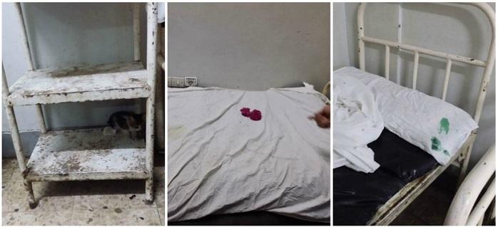 صور منسوبة لمستشفى مشتول السوق بالشرقية: دماء وقطط بغرف المرضى