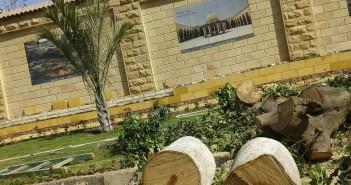 مديرة مؤسسة سفنكس للتنمية: أشجار عمرها 50 عامًا في صلاح سالم تم قطعها