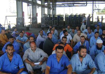 بالفيديو..عمال «هورس» الهندسية يطالبون السيسي بالتدخل لصرف رواتبهم المتأخرة