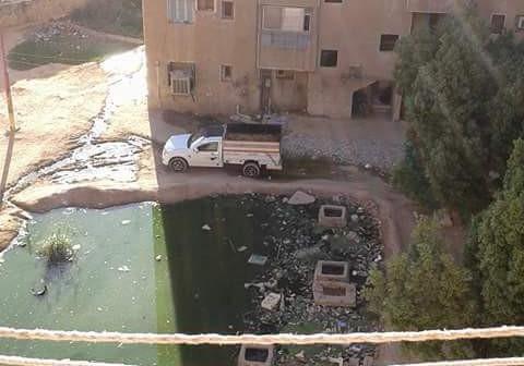 أسوان | طفح الصرف الصحي في شوارع بإدفو (صور)
