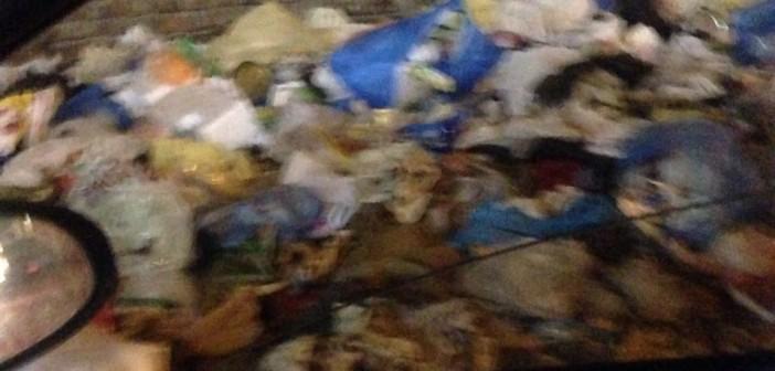 تفاقم أزمة القمامة بالإسكندرية.. ومواطن: «محدش يلوم المحافظ زي المسيري»