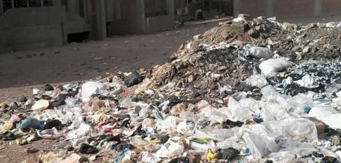 تراكم القمامة بشوارع منية سمنود بالدقهلية (صور)
