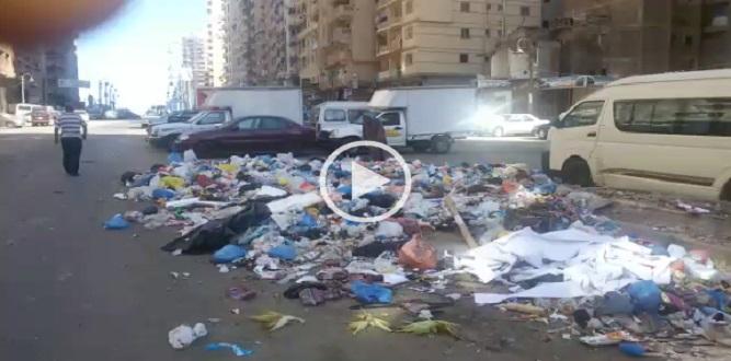بالفيديو | مواطن يرصد انتشار القمامة بالإسكندرية: روائح وقذارة في كل مكان