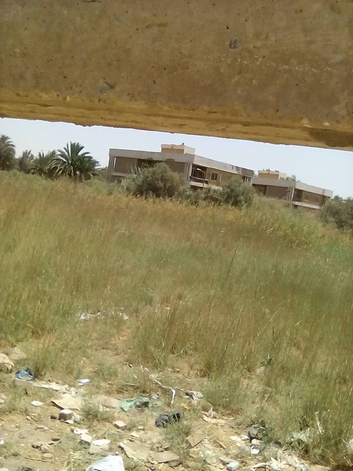 أسوان | إهمال أرض مبنى الإذاعة بـ«النزل»: حشائش وثعابين تملأها (صور)